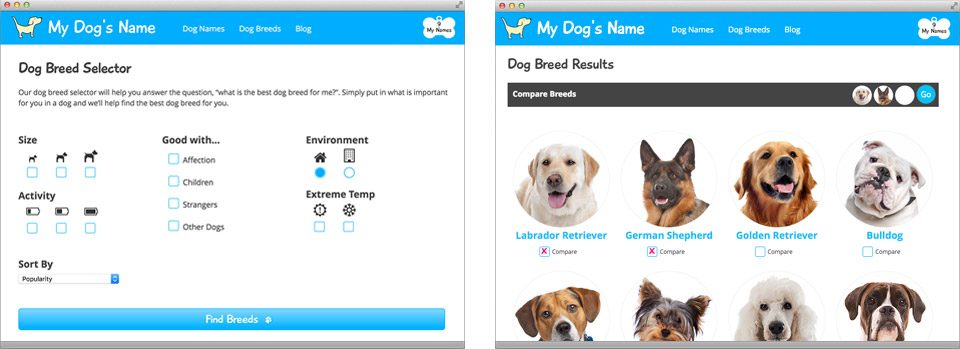 mydogsname-breed-results