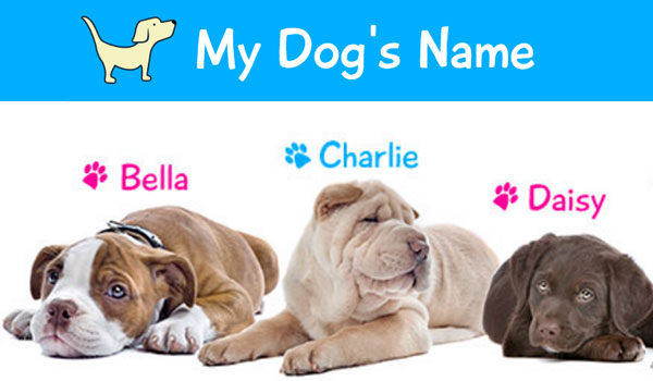 my dogs name